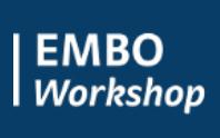 embo workshop on histone chaperones